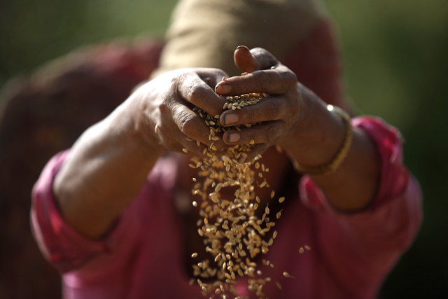 http://nepalitimes.com/assets/uploads/gallery/d8eb9-Farmers-in-Bungamati.jpg