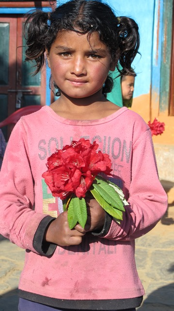 A girl child holds a rhododendron to welcome visitors to the village of Domada in Dadeldhura. Female literacy is up to 50 per cent in a district where till recently only 10 per cent of girls went to school.