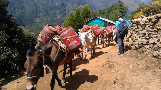 Trekking in Lukla