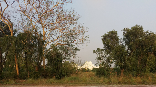 Contrary to expectations, a visit to Lumbini this week as preparations were underway for Buddha Jayanti on Saturday, was a pleasant surprise. The place is lush with sal and simal trees and teeming with birdlife.
