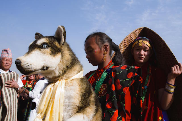 The animal for this year's Lhosar was the dog according to the change in 'Lho' - the astrological system of the Tamu people.