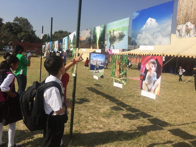 Pic: Shreejana Shrestha