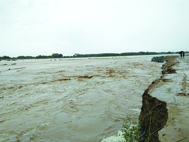 Dam destroyed by the flood in Khado river of Saptari district on 30 June. Pic: Shrawan Kumar Dev