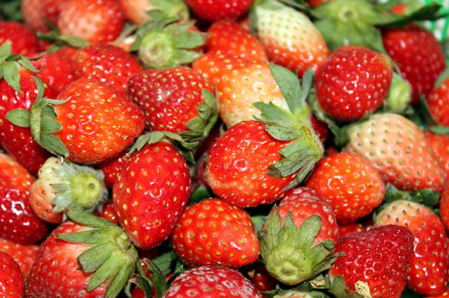 Strawberry mountains | Nation | Nepali Times