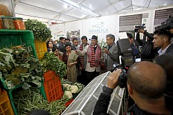 https://archive.nepalitimes.com/image.php?&width=250&image=/assets/uploads/gallery/690f3-PM-at-Trade-Fair.jpg