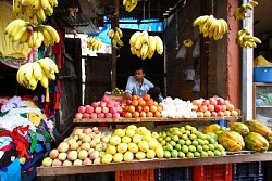 https://archive.nepalitimes.com/image.php?&width=250&image=/assets/uploads/gallery/7a8f6-A-fruits-stall-owner-waits-idly-for-customers-in-Boudha-on-Monday-morning.jpg
